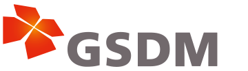 GSDM : Global Leader Program for Social Design and Management